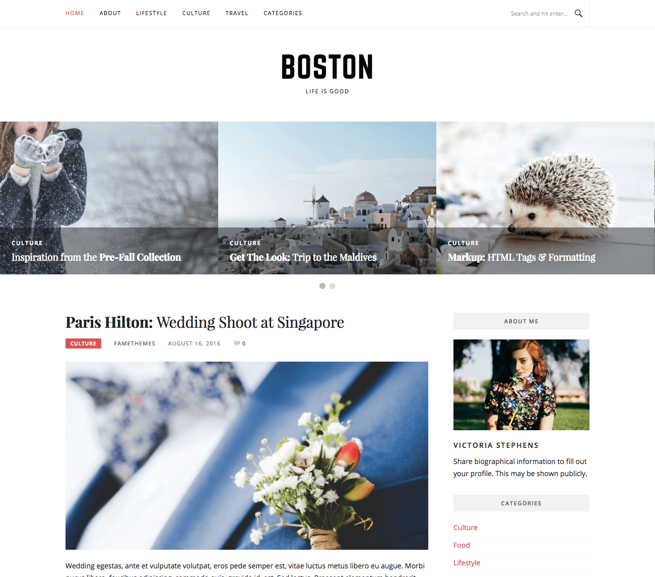 Free Feminine WordPress Theme : Boston – FameThemes