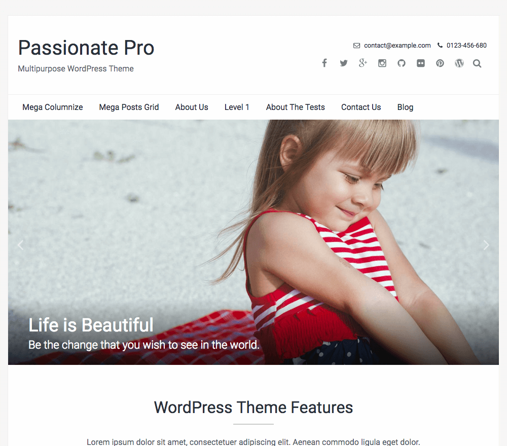 Passionate Pro WordPress Theme